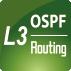 4icon_L3_OSPF_Routing
